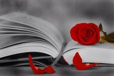 rosa y libro