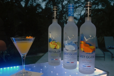 DRINKS-BY-GREY-GOOSE