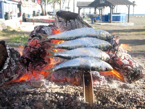 espetos-de-sardinas-malaga